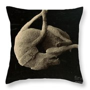 Pompeii: Plaster Cast Throw Pillow