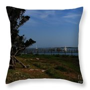 Ponce De Leon Throw Pillow
