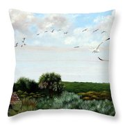 Ponce De Leon Lighthouse Throw Pillow
