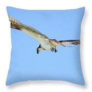 Ponce Osprey 3 Throw Pillow