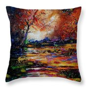 Pond 671254 Throw Pillow