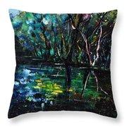 Pond 944 Throw Pillow