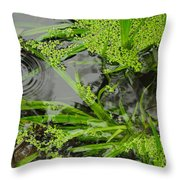 Pond Abstract I Throw Pillow