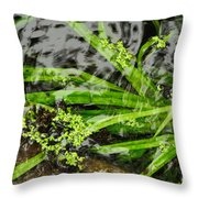 Pond Abstract II Throw Pillow