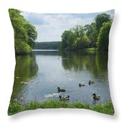 Pond And Ducks Throw Pillow
