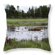 Pond And Swans Throw Pillow
