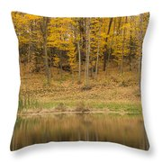 Pond And Woods Autumn 1 Throw Pillow