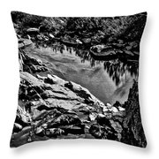 Pond At Great Falls #4 Throw Pillow