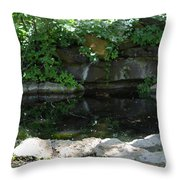 Pond At Twu 2 Throw Pillow
