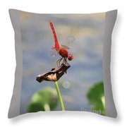 Pond Ballerina Throw Pillow