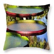 Pond Beauties Throw Pillow