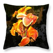 Pond Beauty Throw Pillow