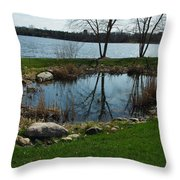 Pond By The Lake Throw Pillow