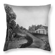 Pond By The Red Barn In Black And White Throw Pillow