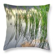 Pond Dreams 3 Throw Pillow