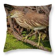 Pond Heron With Fish  Throw Pillow