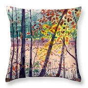 Pond In Fall Throw Pillow