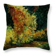 Pond In Fenffe Throw Pillow