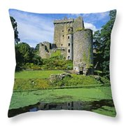 Pond In Front Of A Castle, Blarney Throw Pillow
