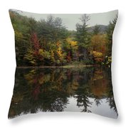 Pond In Jackson Throw Pillow