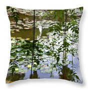 Pond In Marrakesh Throw Pillow
