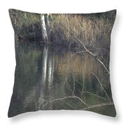 Pond In The Hollow Throw Pillow