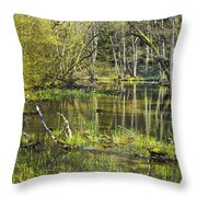 Pond In The Undergrowth. Throw Pillow