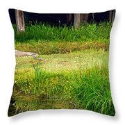 Pond Landscape Print Throw Pillow