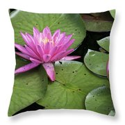 Pond Lily And Bud Throw Pillow
