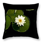 Pond Lily Throw Pillow