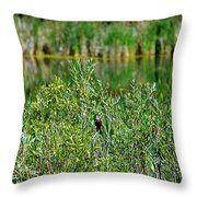Pond On Cherry Creek Study 2 Throw Pillow