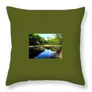 Pond On The Delaware Gap Throw Pillow