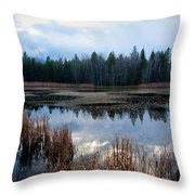 Pond On The Pend Orielle Throw Pillow