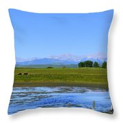 Pond Pasture And  Rocky Mountains Throw Pillow