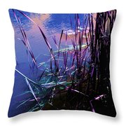 Pond Reeds At Sunset Throw Pillow