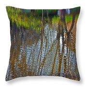 Pond Reflection Throw Pillow