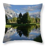 Pond Reflection At Schwabacher Landing Throw Pillow