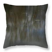 Pond Reflection In The Spring Throw Pillow