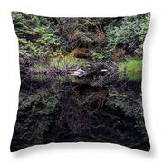 Pond Reflections -- Tongass National Forest Alaska Throw Pillow