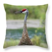 Sandhill Crane With Pond Throw Pillow