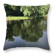 Pond With Ducks Throw Pillow