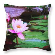 Pond With Water Lilly Flowers Throw Pillow