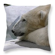 Pondering Pola Throw Pillow