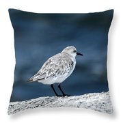 Pondering The Storm Throw Pillow