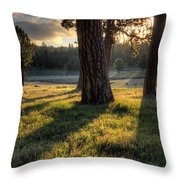Ponderosa Pine Meadow Throw Pillow