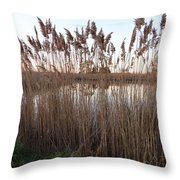 Pondside Tranquility Throw Pillow