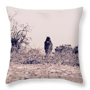 Poney Throw Pillow