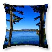 Pontoosuc Folaige 2 Throw Pillow