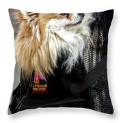 Pooch In The Pouch Throw Pillow