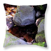 Pool In The Rainforest Throw Pillow